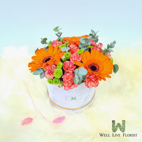 Flower Box of Fresh Cut  Gerbera , Carnation Spray and Foliage