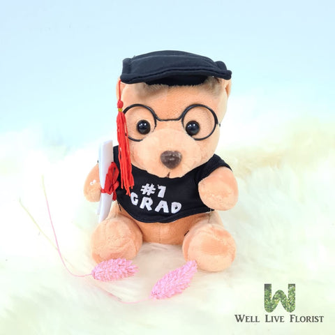 Plush Toy Bear . 16 cm Height