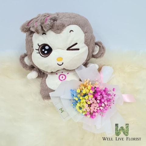 Rainbow Color Baby's Breath or 03 Pink Color Roses Hand Bouquet and Plush Toy Monkey