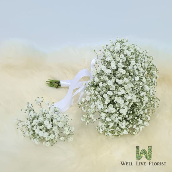 Baby's Breath Bridal Hand Bouquet