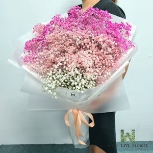 Hand Bouquet of Two Tone Pink Color Baby's Breath