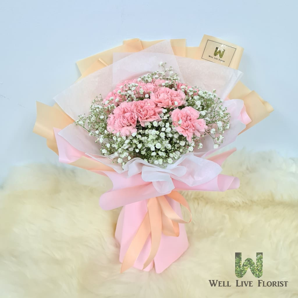 Hand Bouquet of 09 Fresh Cut Carnation and Baby's Breath