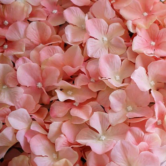 Blush Ivory Artificial Hydrangeas Flower Wall