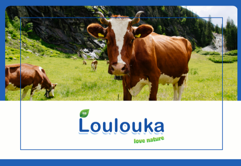 All About LouLouka/LouLouka Brochure