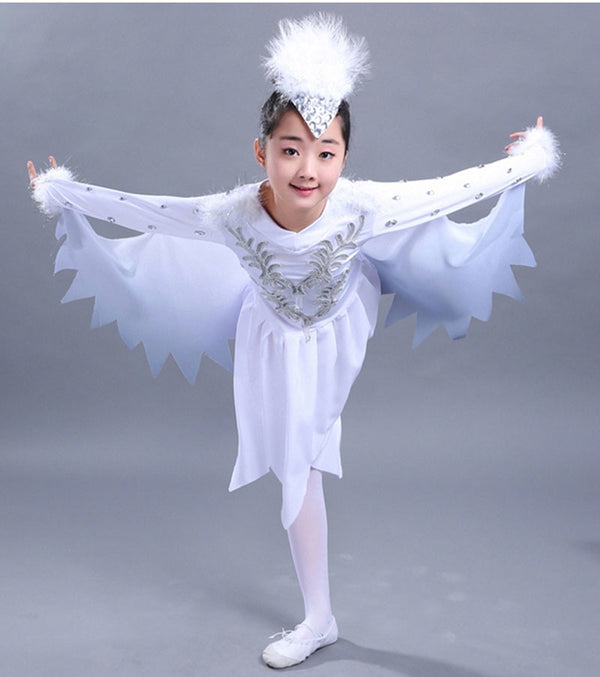 Ballerina Fancy Dress Costume
