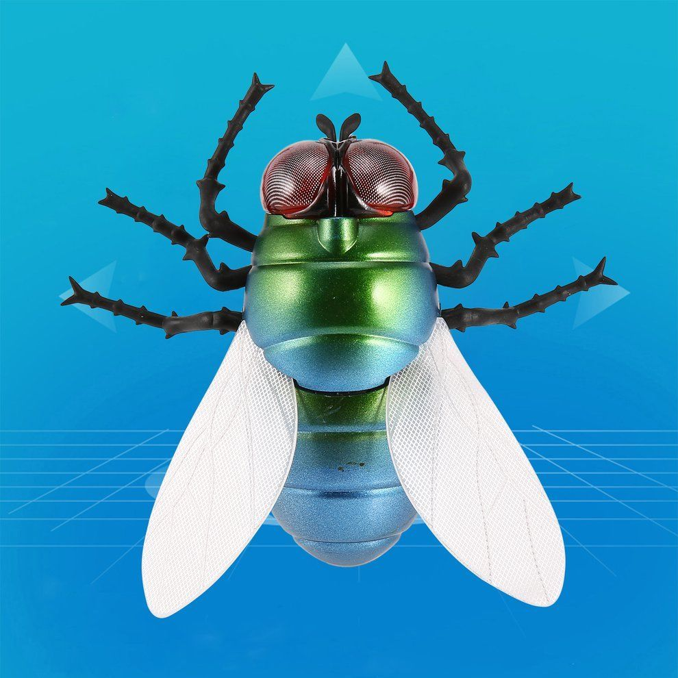 RC Fly Insect Toy