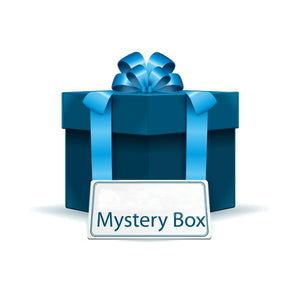 Monthly Toys Mystery Box