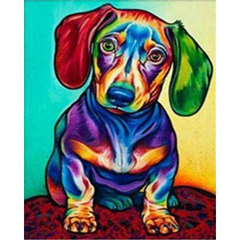 Image of Colorful Dachshund