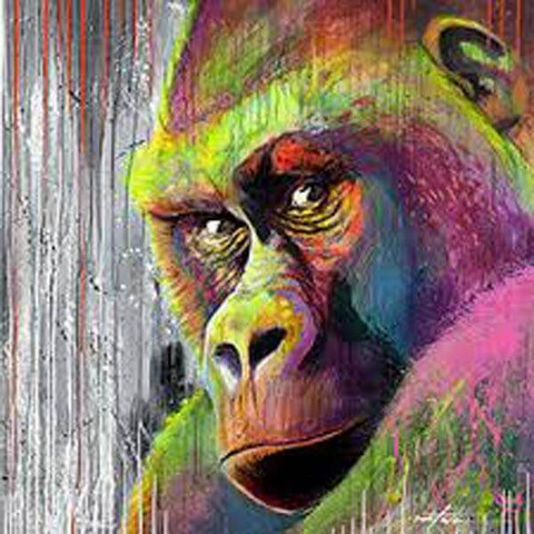 Image of Colorful Gorilla