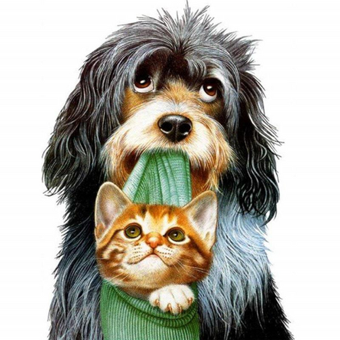 Image of Dog and Cat Buddies