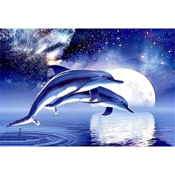 Dolphin Moonlight Jump