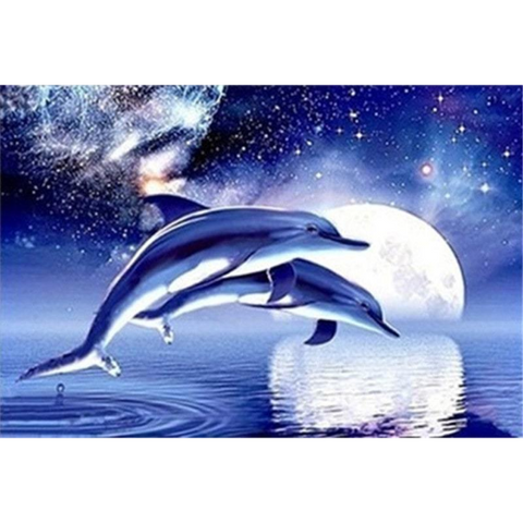 Image of Dolphin Moonlight Jump