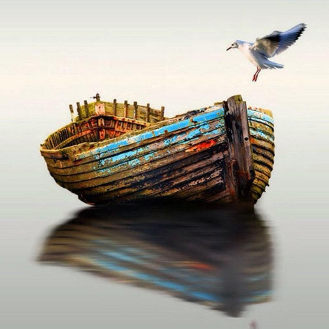 Image of Gull and Row Boat