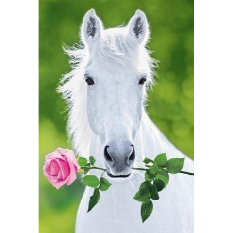 Image of Horse Rose