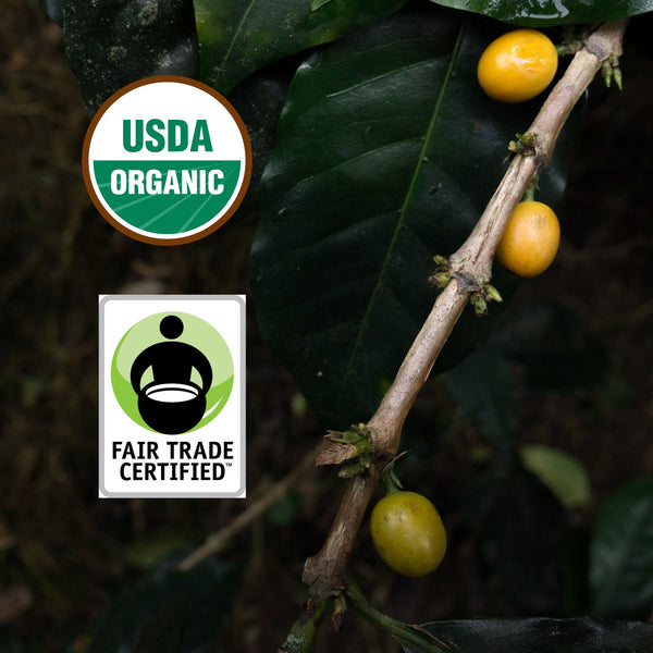 Our coffee is USDA Organic certified, and fair trade certified.