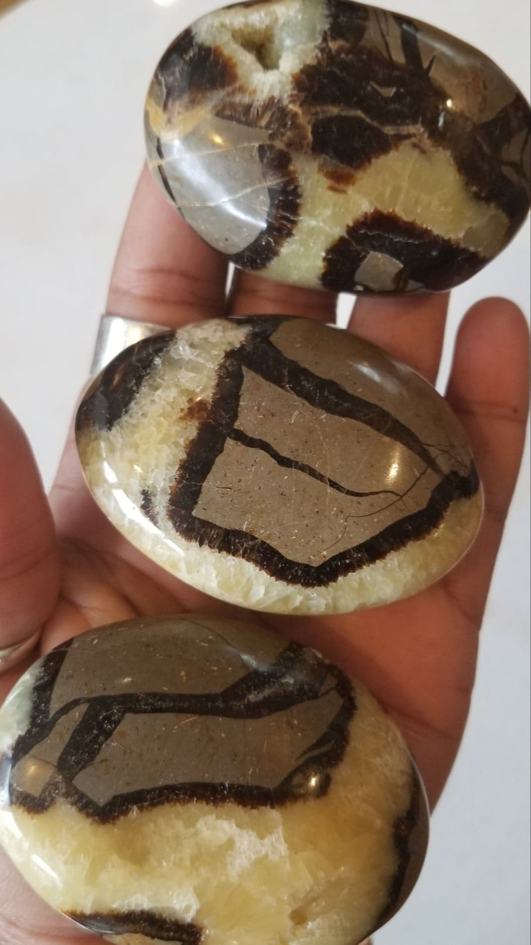 Septarian Palm Stone Gallet (Dragon Stone)