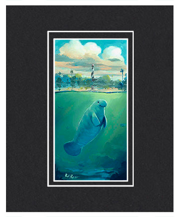 St Augustine Manatee - Matted Print, 11x14