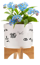 Mini Ceramic Planter set with Seeds & Peat Pellet featuring Beau and Friends