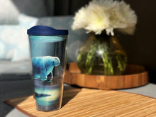 Spring '19 Tervis Tumbler, Curious Manatee by artist Rob Kaz