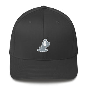 Flexfit Structured Twill Cap with Two-Tone Beau