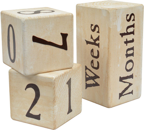 Maple Landmark Photo Prop Blocks