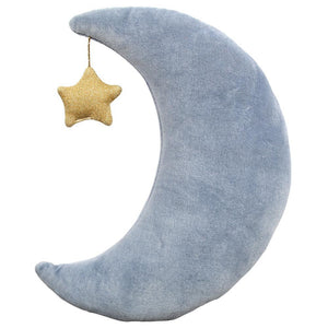 Velvet Moon Cushion