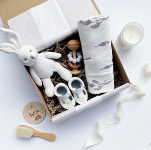 The Surprise Baby Box for Newborns