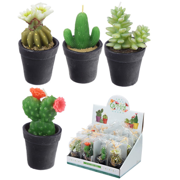 Fun Mini Candles - Small Cactus in a Pot