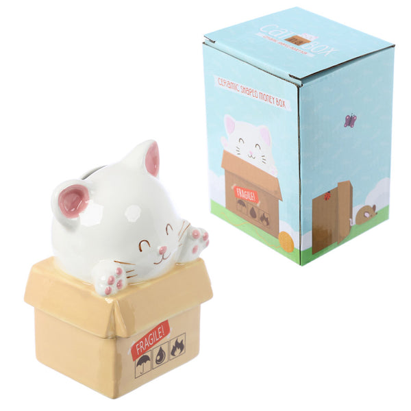 Collectable Cat in a Box Money Box