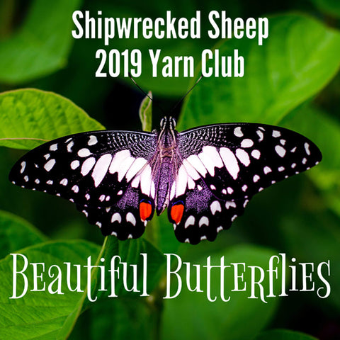 2019 Yarn Club - Butterflies
