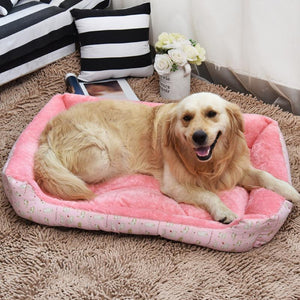 Soft Dog Beds