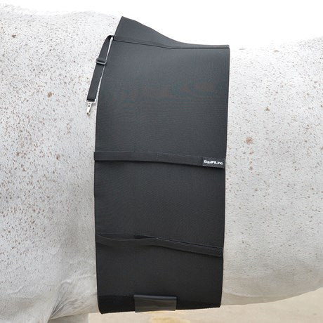 Equifit Belly Band