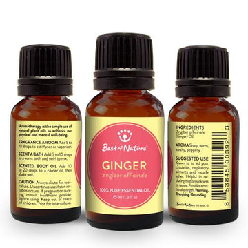 Ginger Essential Oil - Spa & Bodywork Market