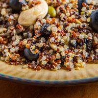 YEW British Columbian Blueberry Quinoa Salad