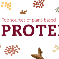 Best Plant-Based Protein Sources - Infographic