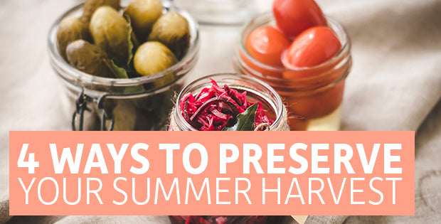 4 Ways to Preserve Your Summer Harvest