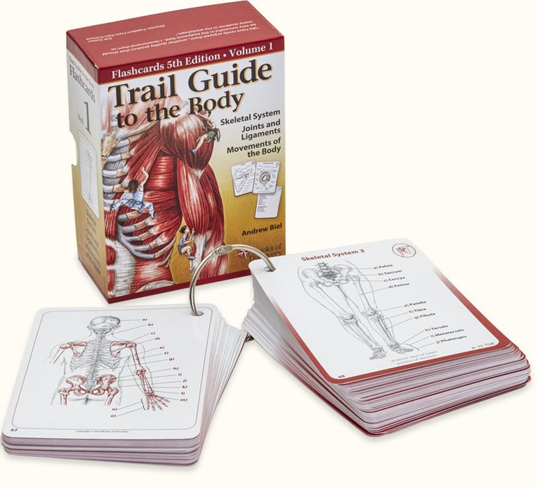 Trail Guide to the Body Flashcards Volume 1 - 5th Edition - Spa & Bodywork Market