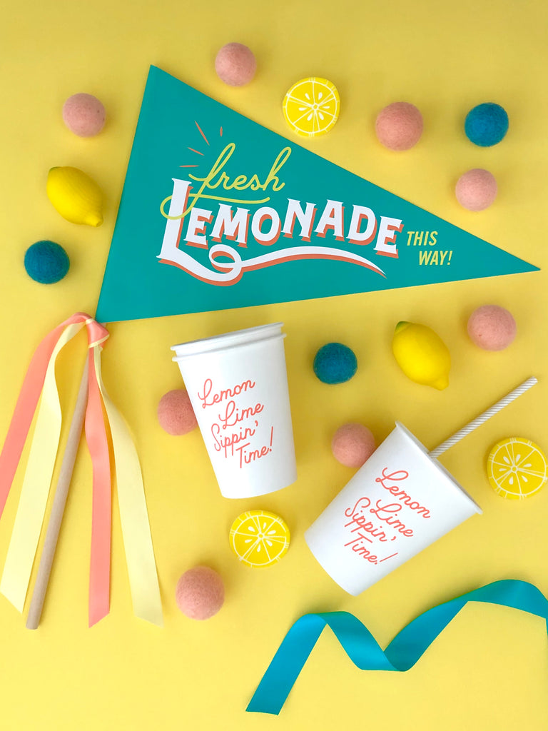 Lemonade Brigade Lemonade Stand Kit