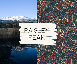 Paisley Peak Handbag - Sew Grown Limited