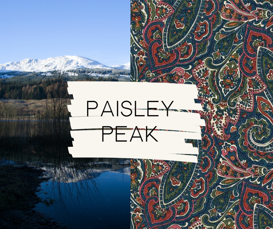 Paisley Peak 12 Bottle Essential Oil Case - Sew Grown Limited