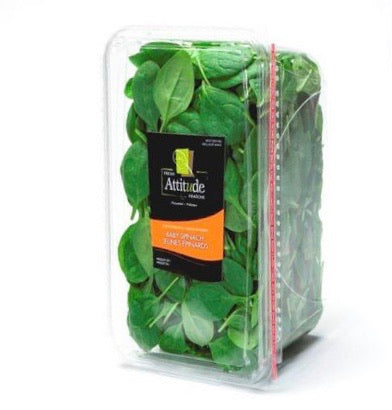 Baby spinach - اسفناج