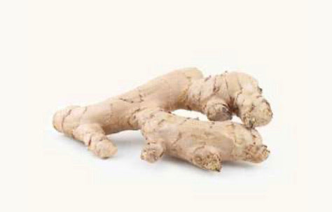 Ginger Root- زنجبیل