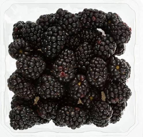 blackberry - توت سیاه