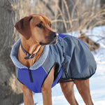 Chinook Dog Coat-Out of stock