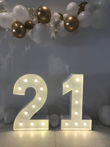 21 light up numbers