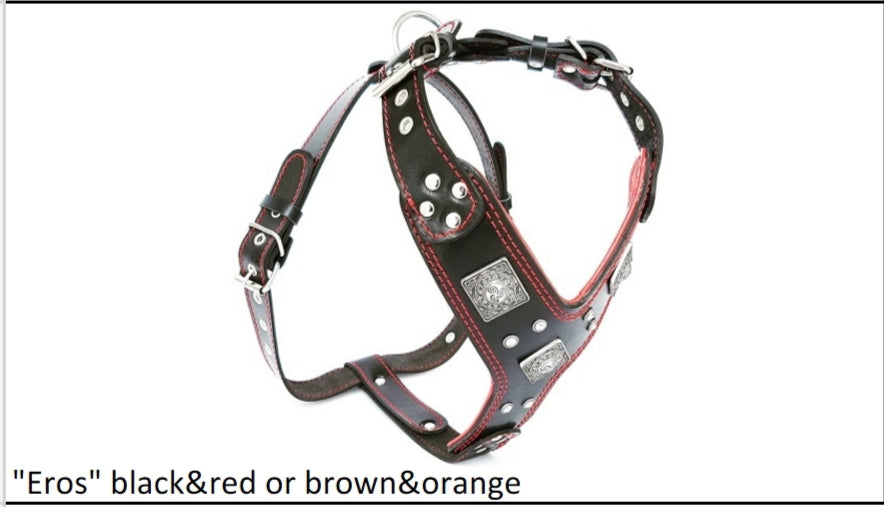 Leather Harness- The