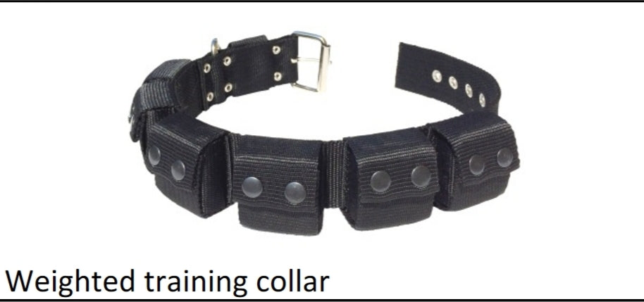 Weighted Dog Training Collar