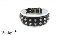 "Leather Collar-  ""Rocky"""