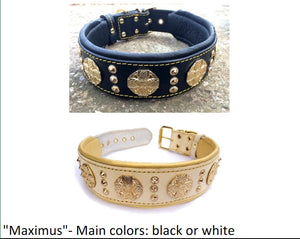 "Leather Collar- The ""Maximus"""
