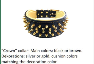 "Leather Collar- The ""Crown"""